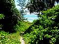 沖縄の土地「うるま市与那城伊計」